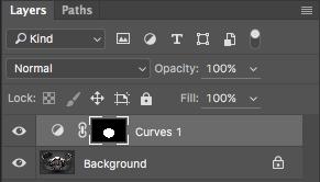 Name:  10_Curves Adjustment Layer Mask.png Views: 550 Size:  18.1 KB