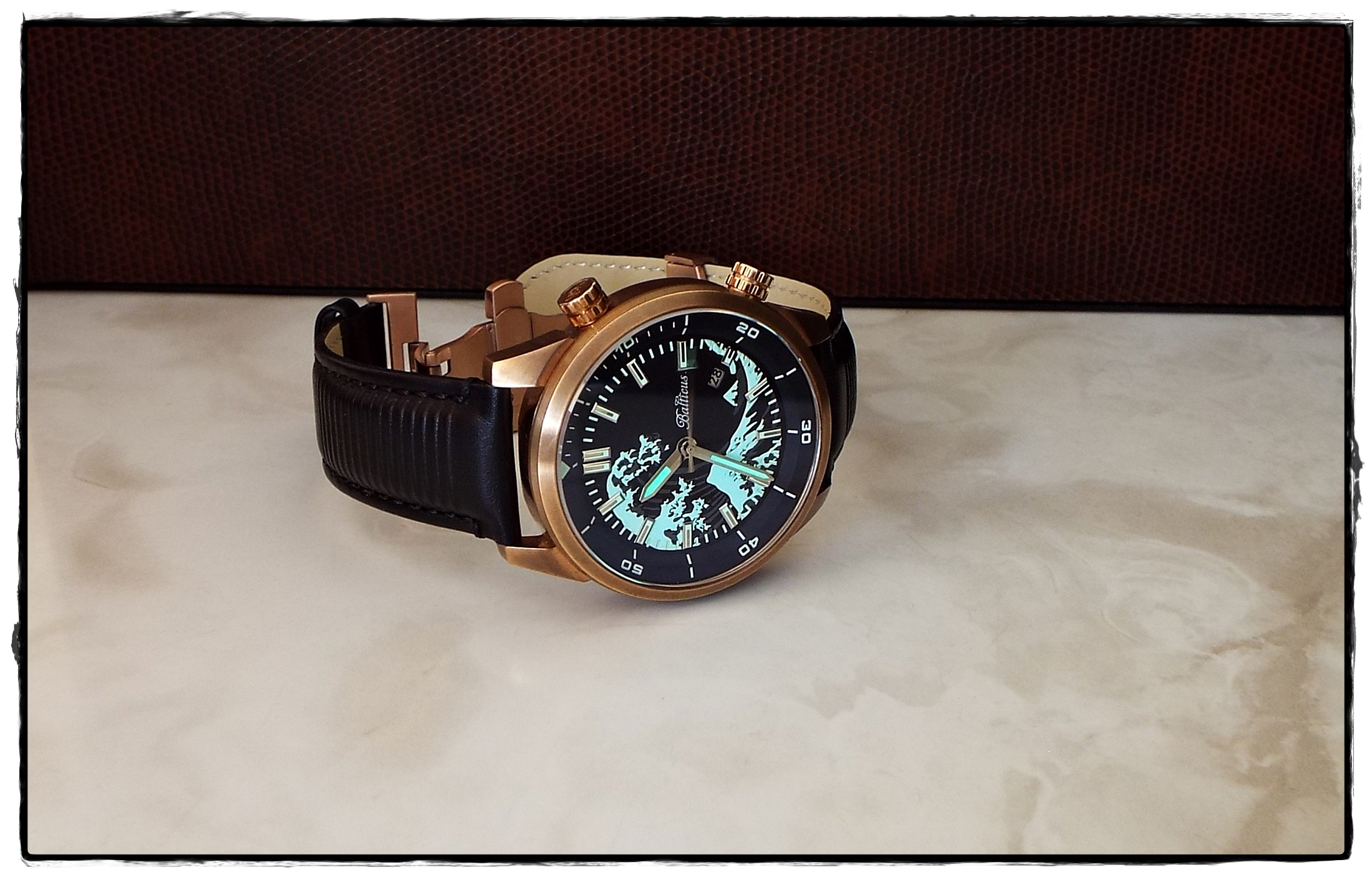 Name:  2. Balticus Bronze Wave  BALWB01.JPG