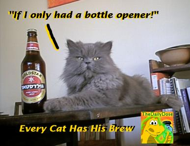 Name:  2004-07-05-rejected-goldstar-ad-toulouse-has-his-beer.jpg