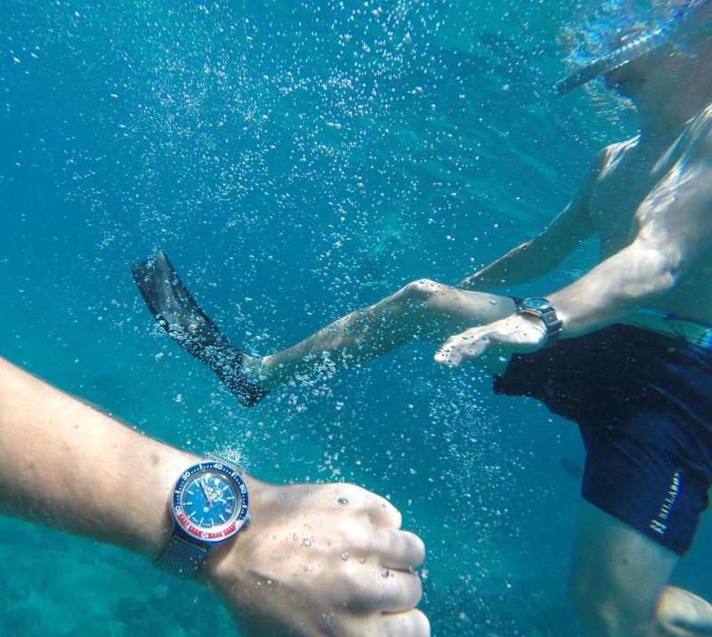 Name:  amphibia_underwater.jpg Views: 1315 Size:  246.4 KB