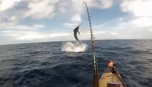 Name:  Australian-Kayak-Marlin-YouTube.jpg