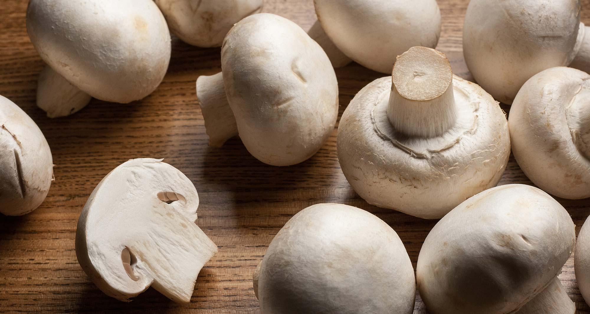 Name:  blog-featured_mushrooms-20180515.jpg Views: 79 Size:  198.4 KB