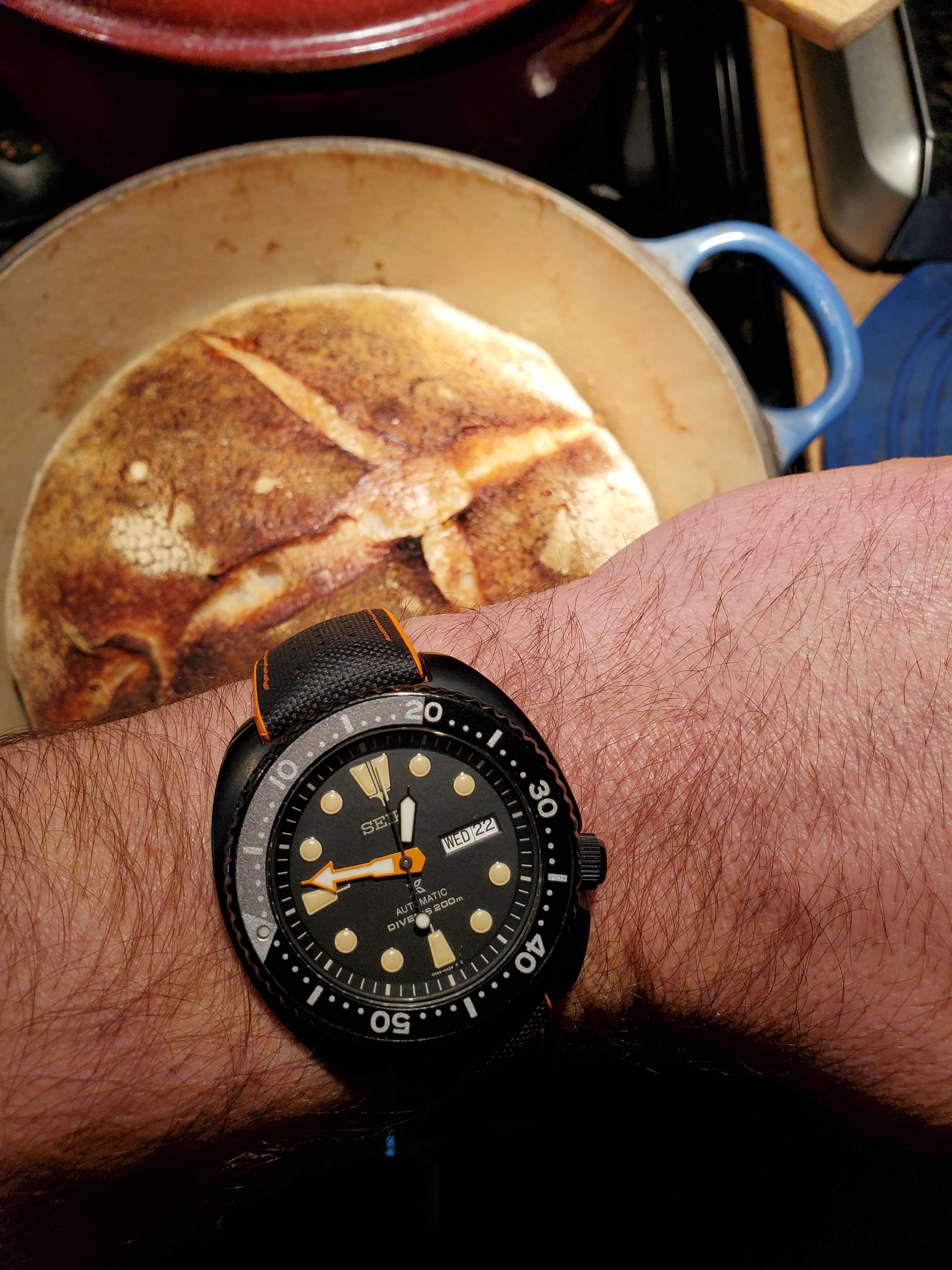 Name:  bread turtle.jpg Views: 20 Size:  693.4 KB
