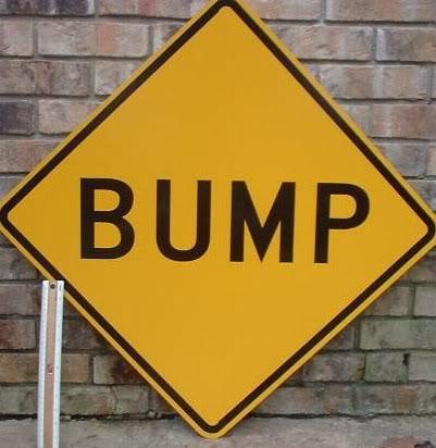 Name:  bump.jpg Views: 1161 Size:  30.7 KB