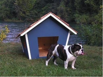 Name:  doghouse.jpg Views: 874 Size:  59.8 KB