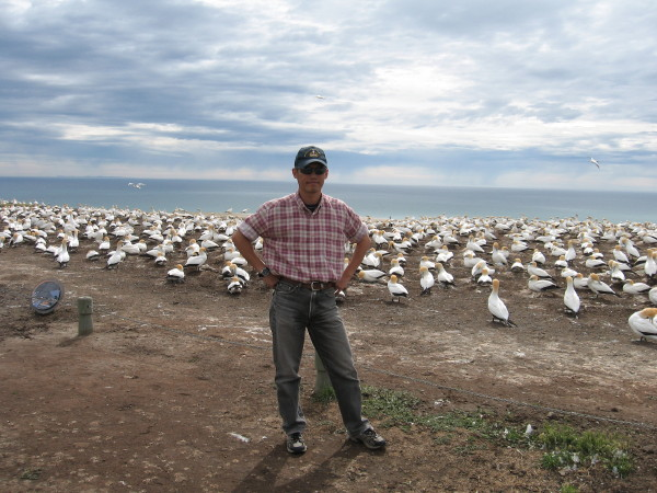 Name:  Gannets_Kidnappers_Cape_1.jpg Views: 334 Size:  101.6 KB