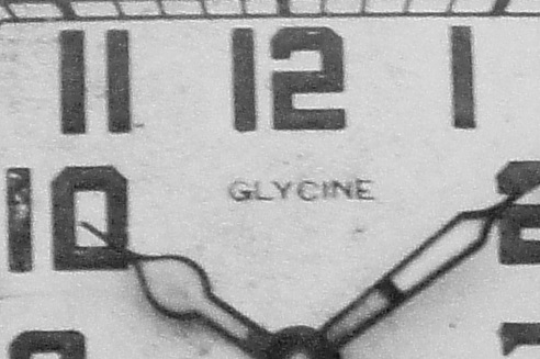 Name:  GLYCINE1920S.jpg Views: 5721 Size:  100.6 KB