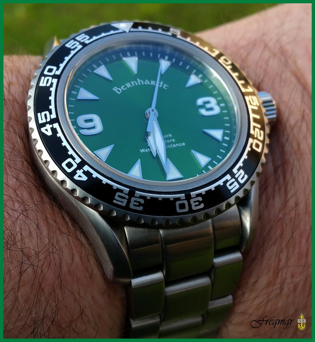 Name:  greenshark.jpg Views: 42 Size:  395.7 KB