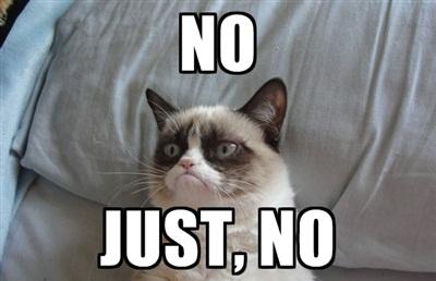 Name:  Grumpy_Cat_No.jpg Views: 162 Size:  35.5 KB