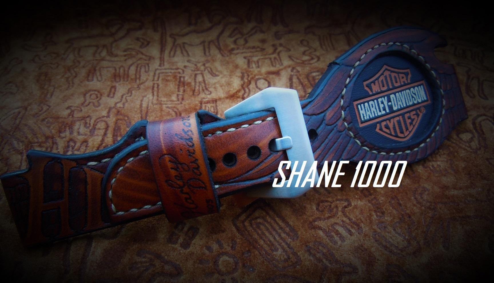 Name:  Harley Davidson SHANE.jpg Views: 115 Size:  476.5 KB