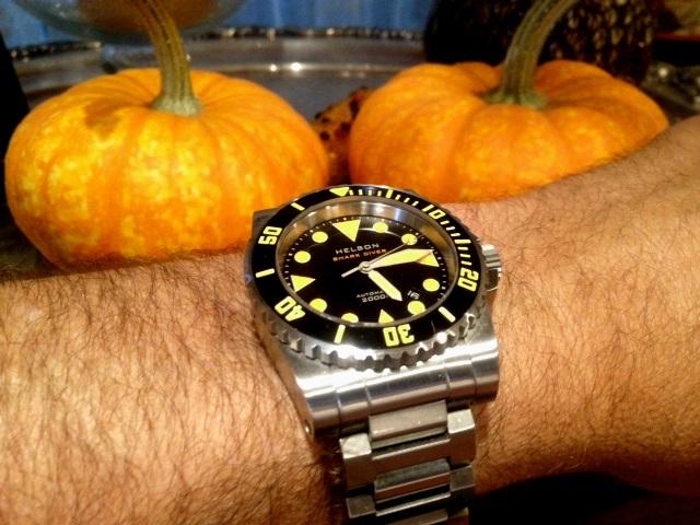 Name:  Helson pumpkin.jpg Views: 398 Size:  119.4 KB