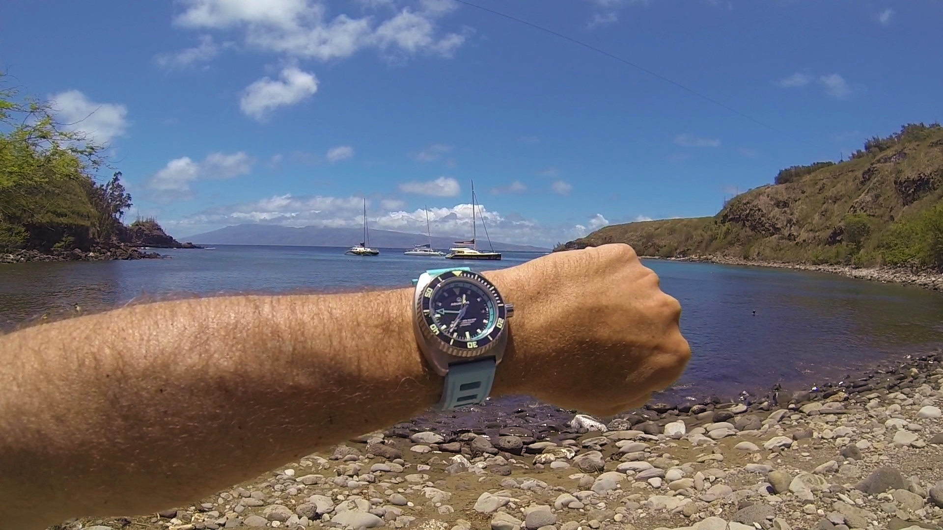 Name:  Honolua Bay Aquadive GMT (2).jpg