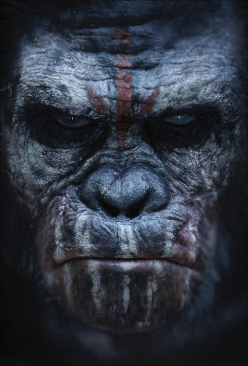 Click image for larger version.  Name:hr_Dawn_of_the_Planet_of_the_Apes_4.jpg Views:153 Size:109.6 KB ID:1308921
