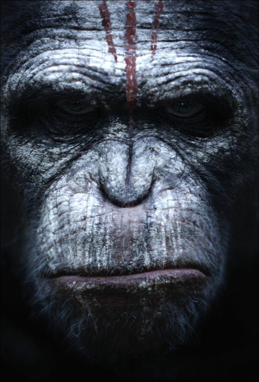 Click image for larger version.  Name:hr_Dawn_of_the_Planet_of_the_Apes_5.jpg Views:145 Size:137.3 KB ID:1308923