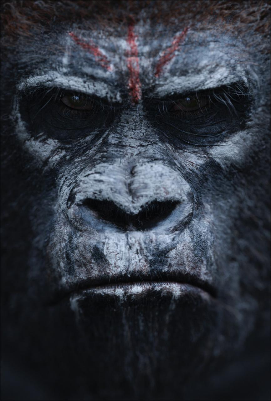 Click image for larger version.  Name:hr_Dawn_of_the_Planet_of_the_Apes_6.jpg Views:132 Size:116.0 KB ID:1308924