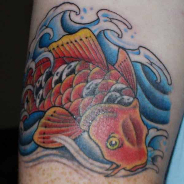 Got another old tattoo covered up, upper right arm, Koi Carp breaking the