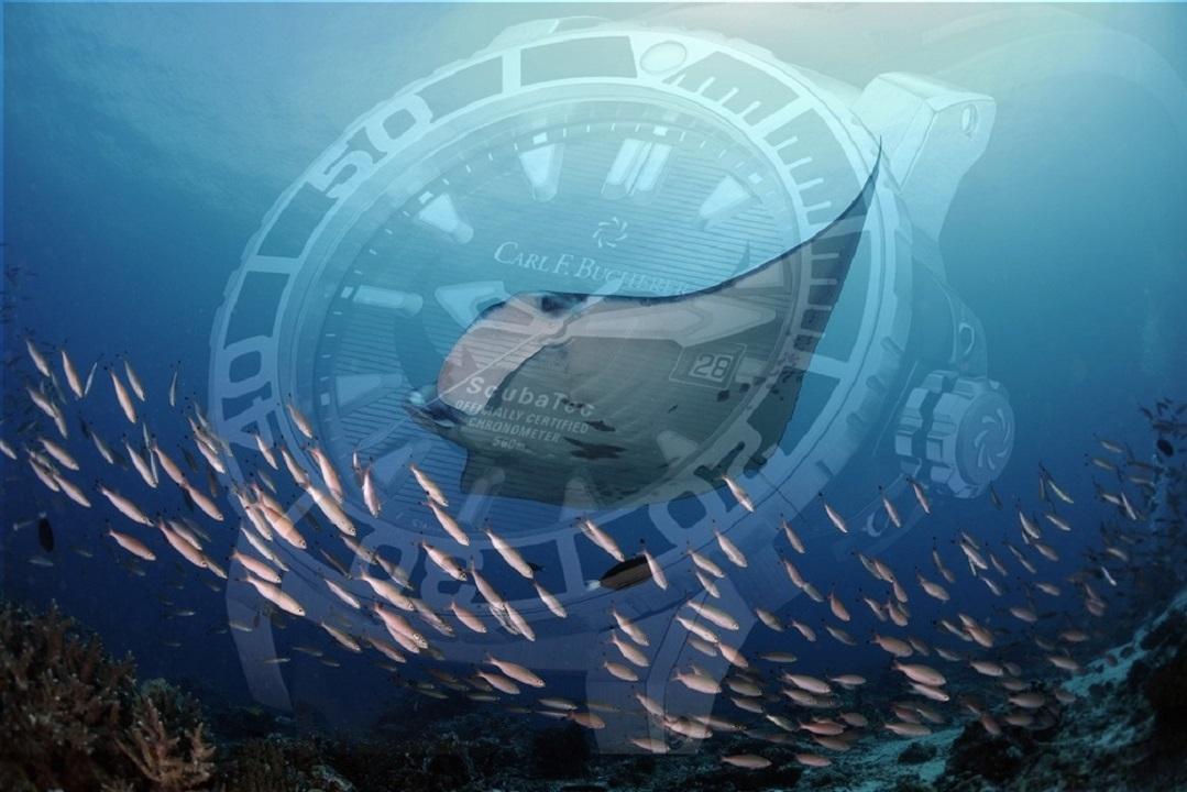 Carl F. Bucherer Patravi ScubaTec Manta Trust In Aid of Manta Ray Research