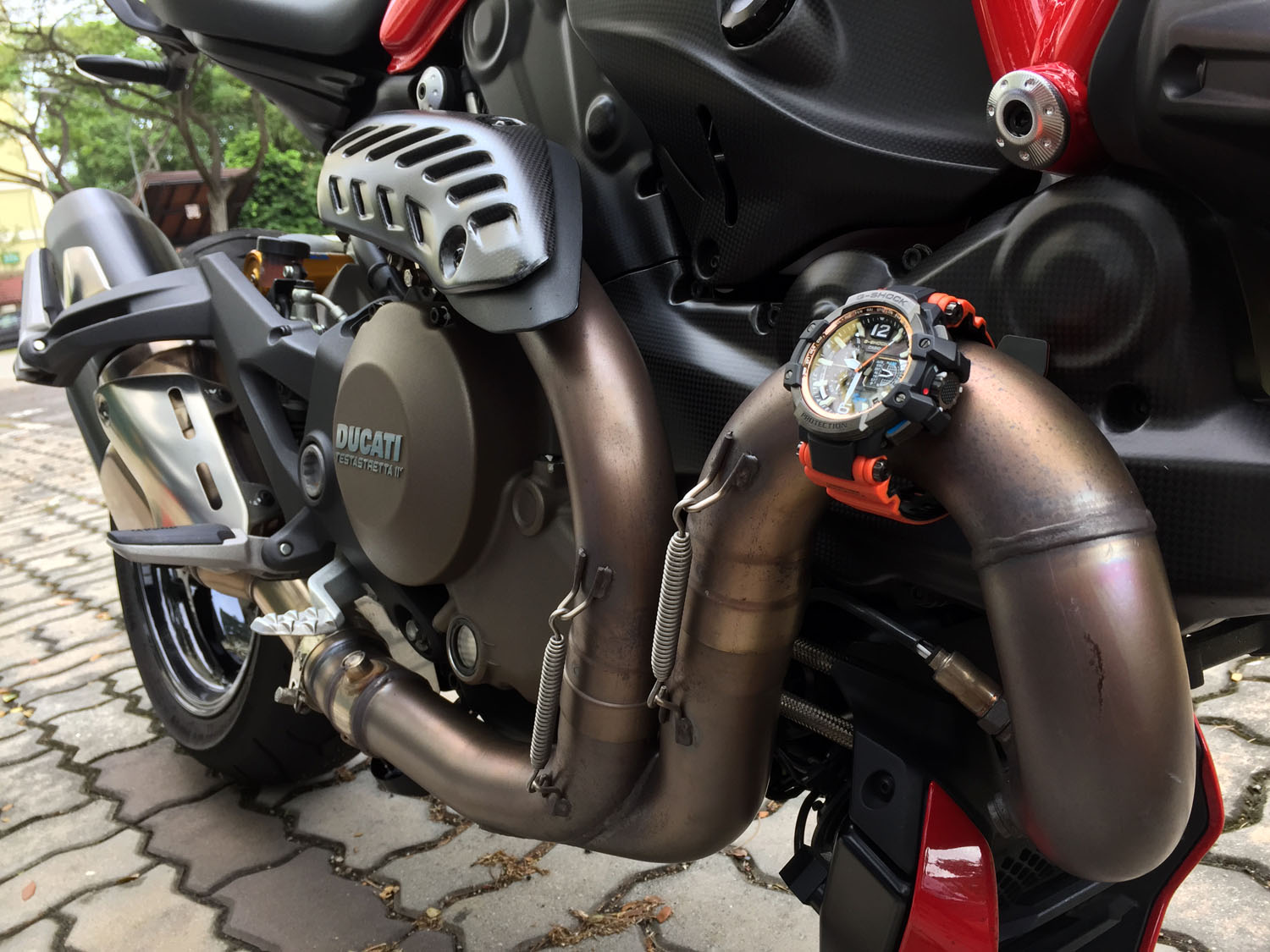 Name:  monster watch on monster bike SMALL.jpg
