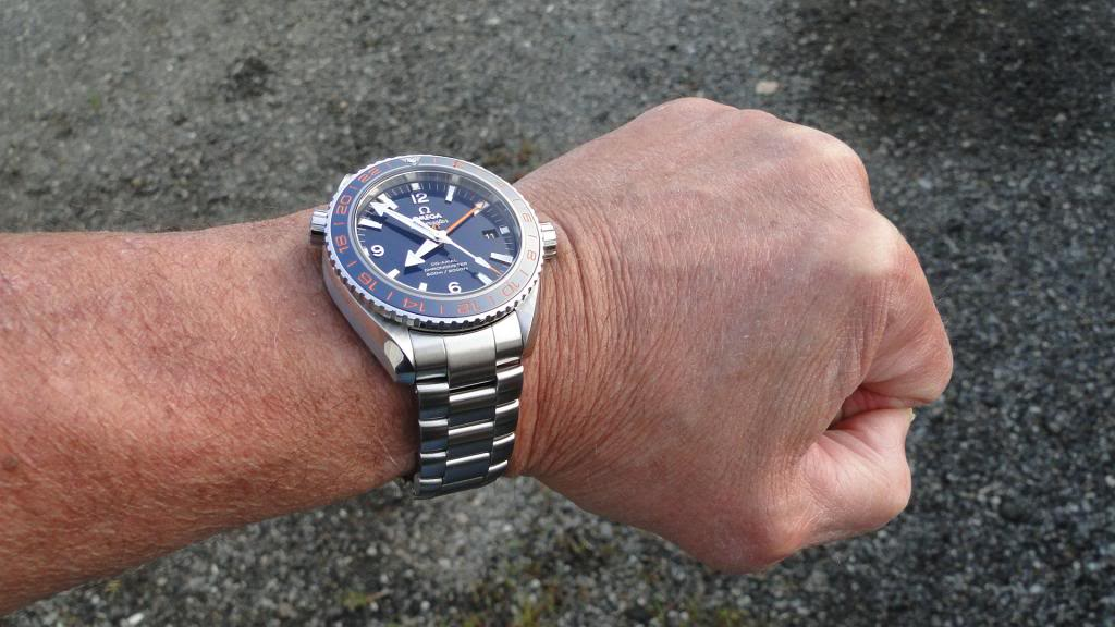 Name:  Omega GoodPlanet GMT 4.jpg