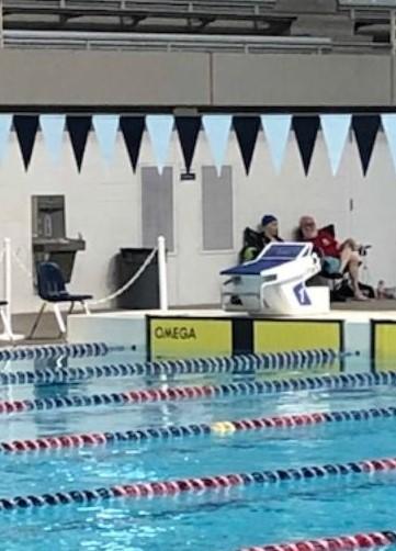 Name:  omega swim timer.jpg Views: 35 Size:  80.8 KB