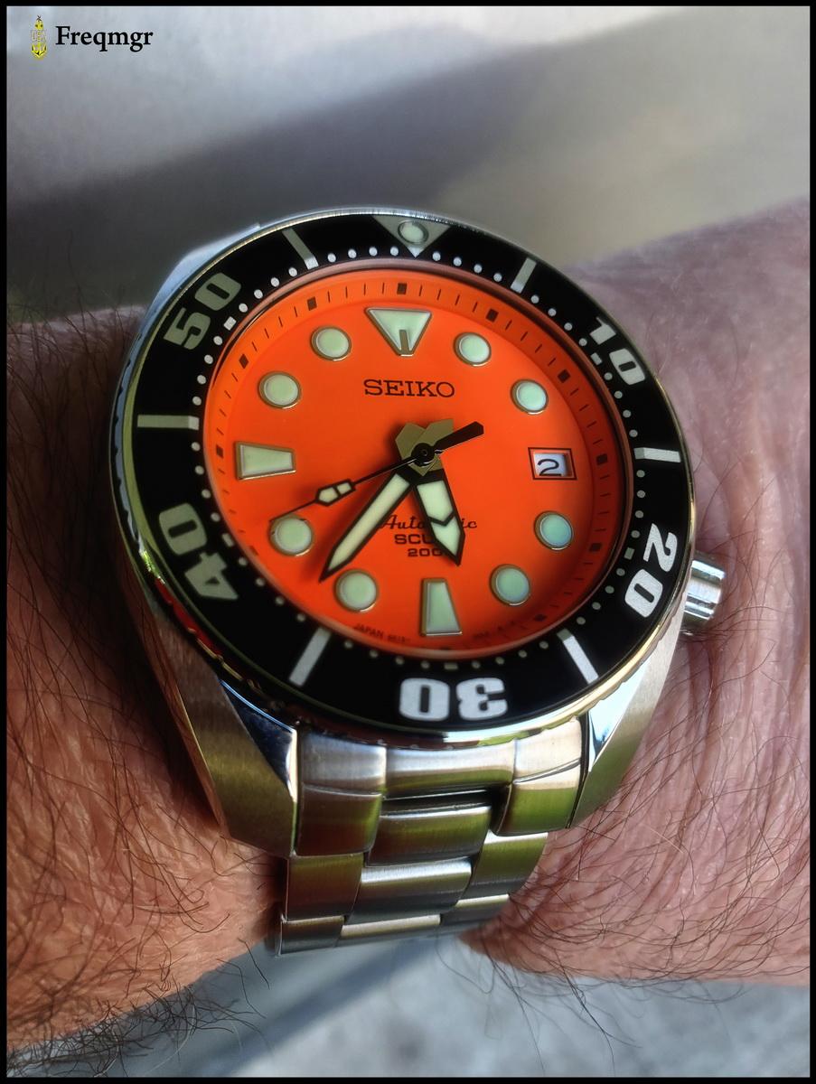 Name:  orangemo8.jpg Views: 42 Size:  327.9 KB