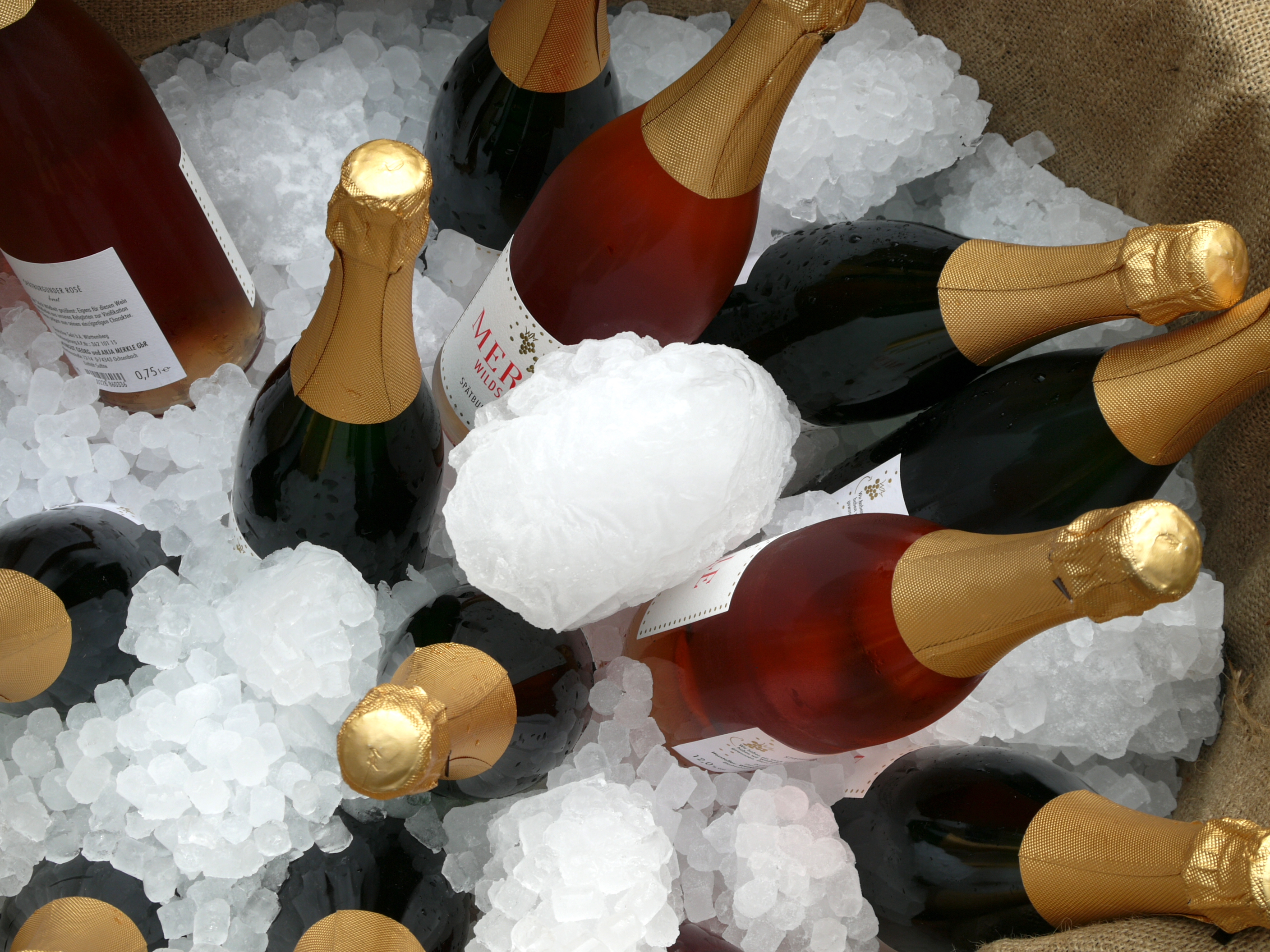 The owners of Merkle Wein Ochsenbach presented wine tasting from regional vineyard