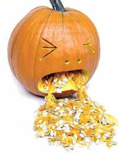Name:  pumpkin-puking.jpg Views: 322 Size:  35.1 KB