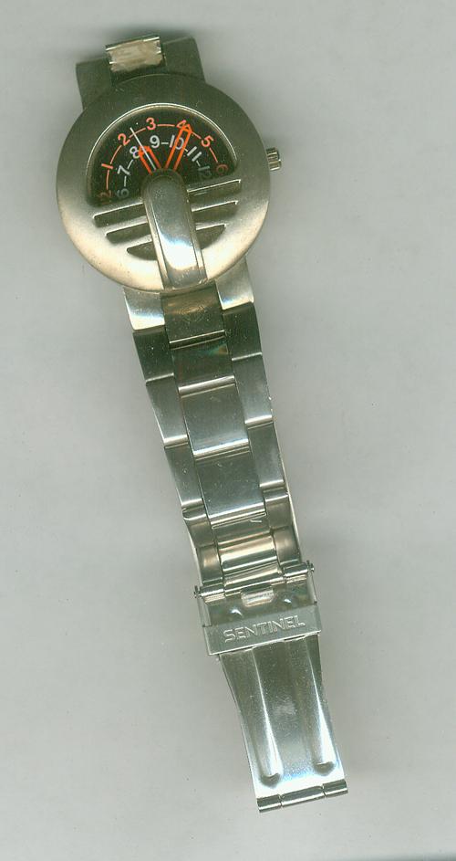 Name:  sentinel watch.jpg Views: 188 Size:  622.8 KB