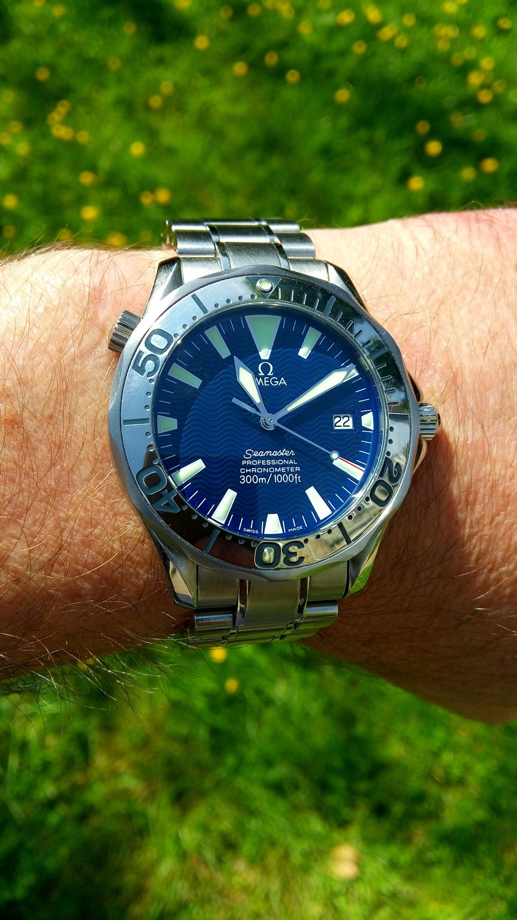 Name:  Smaller Sunny Blue.jpg Views: 136 Size:  641.4 KB