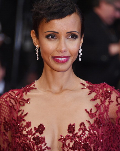 Name:  Sonia-Rolland-Cannes-395x500.jpg Views: 218 Size:  52.7 KB