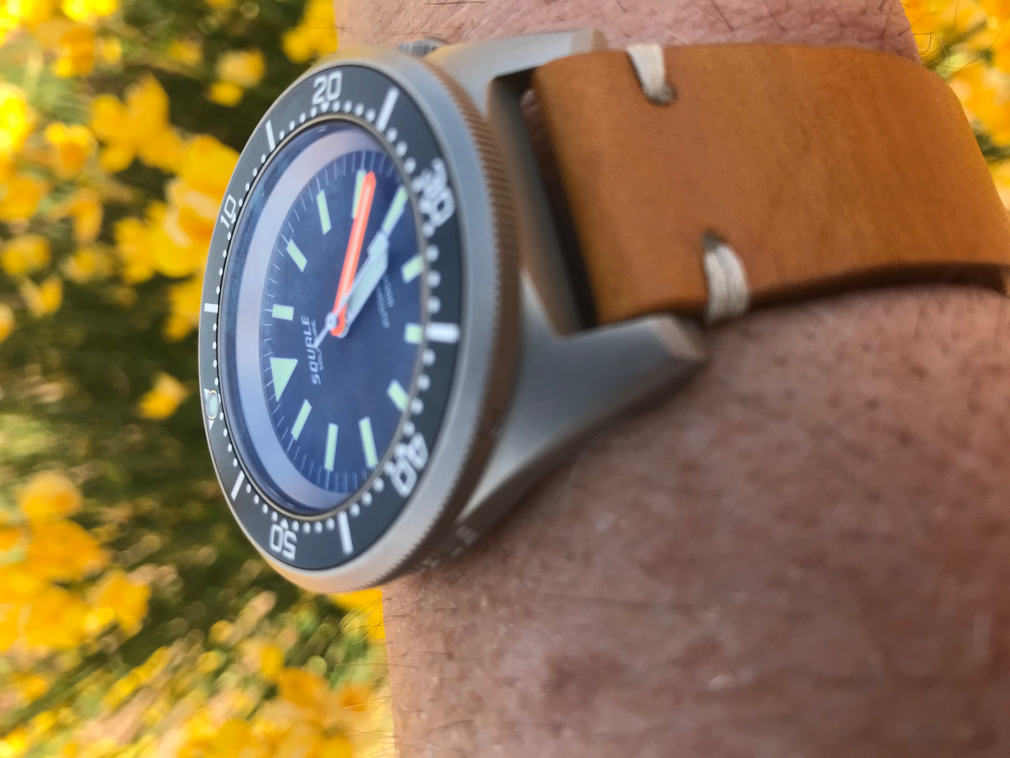 Name:  Squale Militaire 2.jpeg Views: 43 Size:  451.8 KB