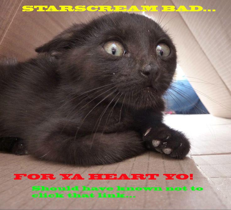 Name:  Starscream.bad.cat.jpg Views: 1686 Size:  127.6 KB
