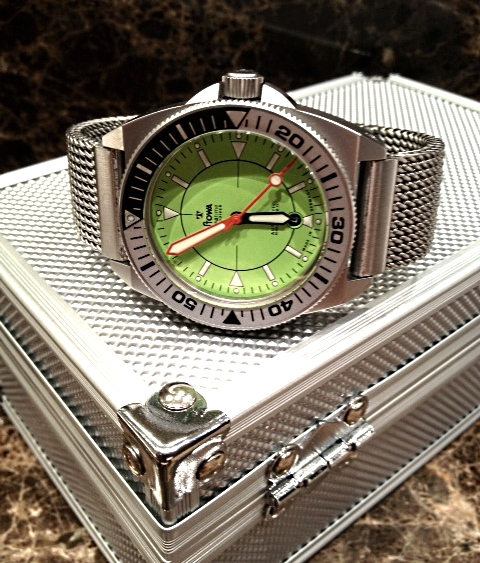 Name:  Stowa Prodiver Lime Mesh 1.jpg