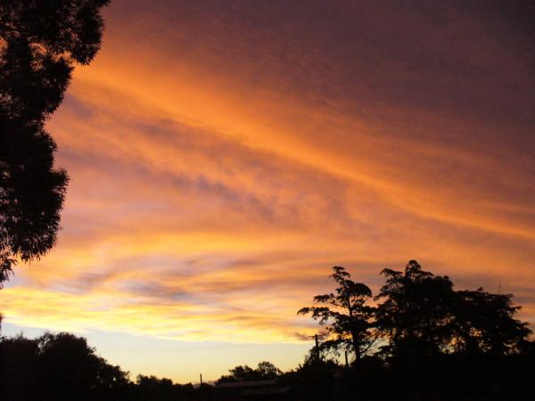 Name:  sunset1 M&D 2010_1.jpg Views: 150 Size:  69.2 KB