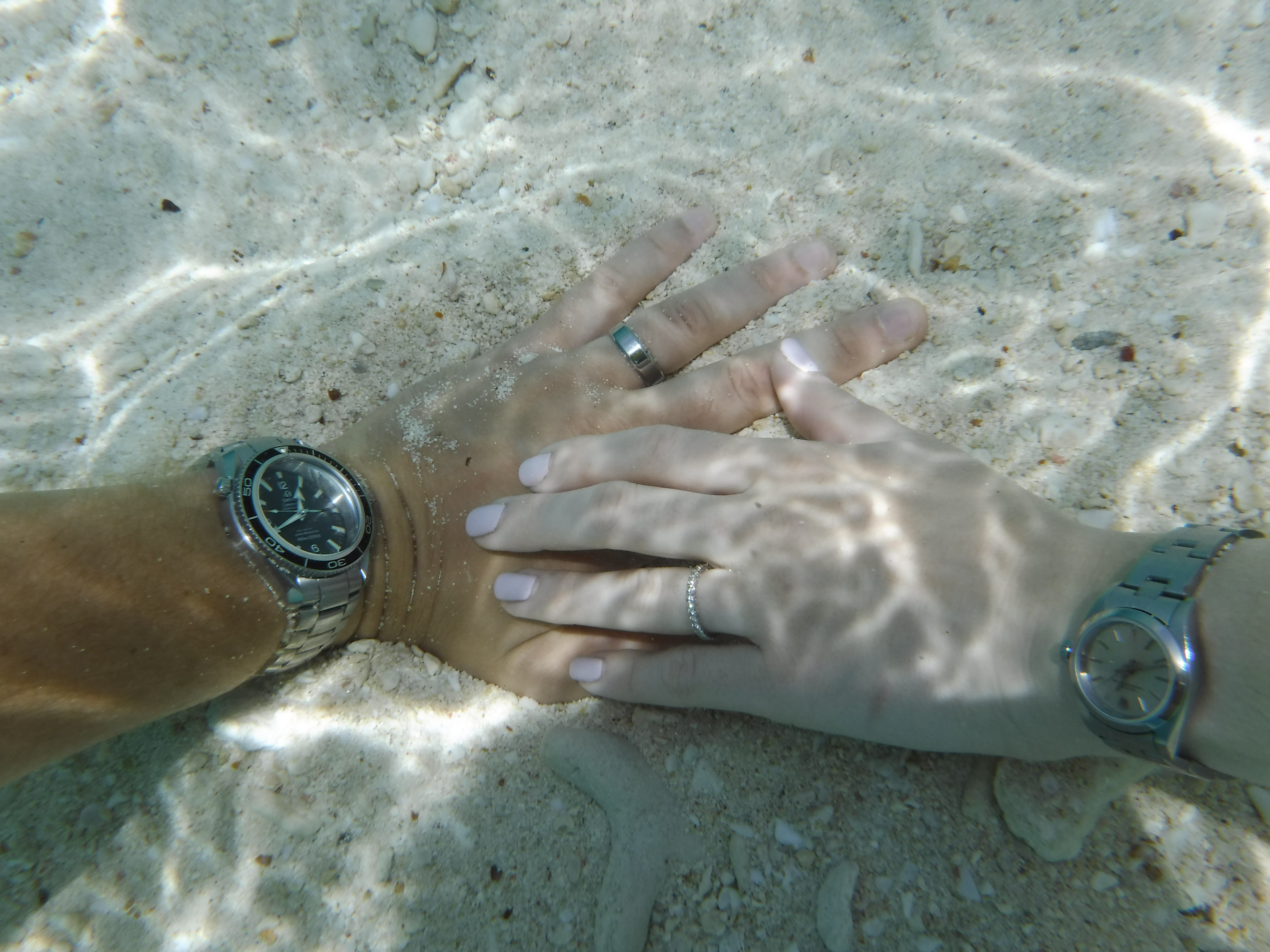 Name:  two under water.JPG Views: 735 Size:  1.35 MB