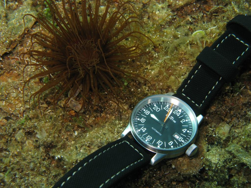 Name:  underwater.JPG Views: 2432 Size:  146.0 KB