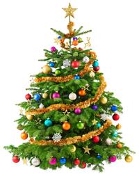 Name:  Weihnachtsbaum klein.png Views: 362 Size:  74.6 KB