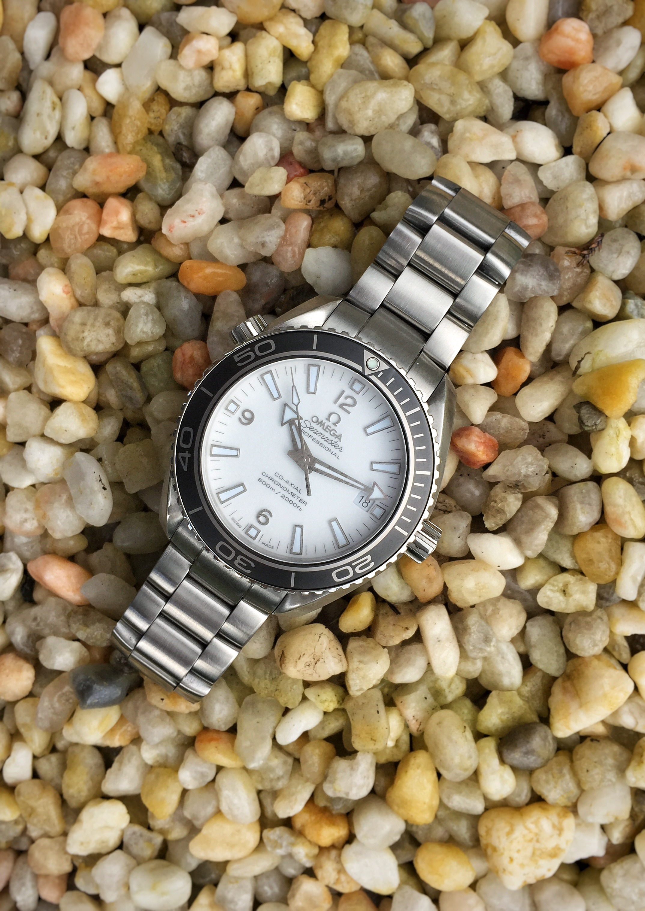 Name:  White PO with gray bezel 07.jpg