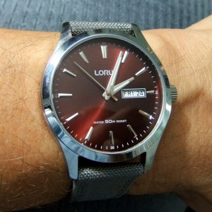 Lorus_Brown1_small.jpg